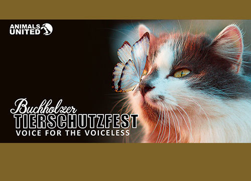 Beautiful Commitment Tierschutzfest Buchholz 2020