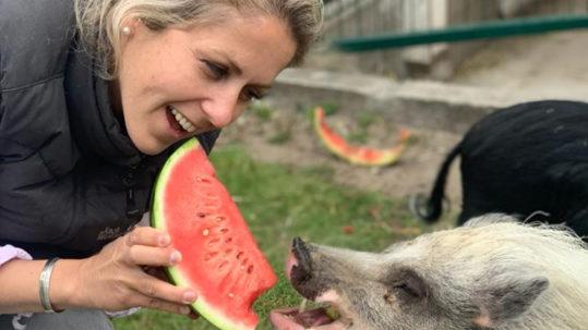Beautiful Commitment Podcast 81 Warum wir im Herzen bereits alle vegan sind